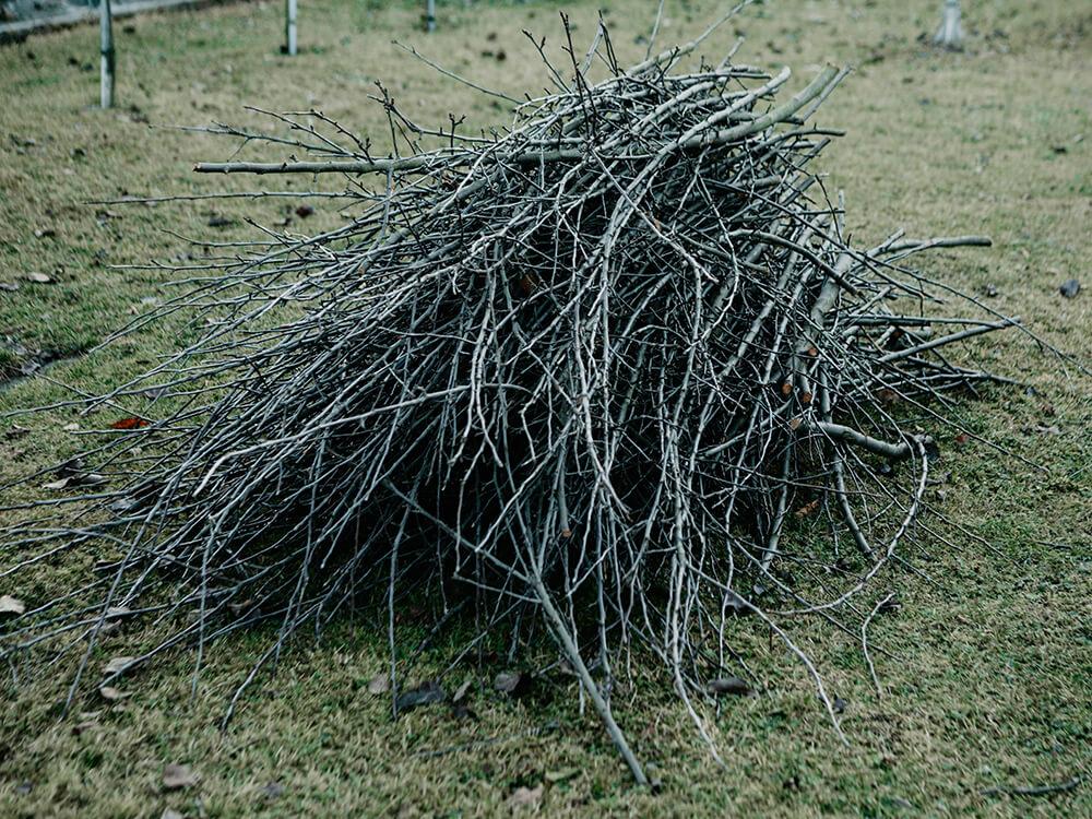 hromada větví